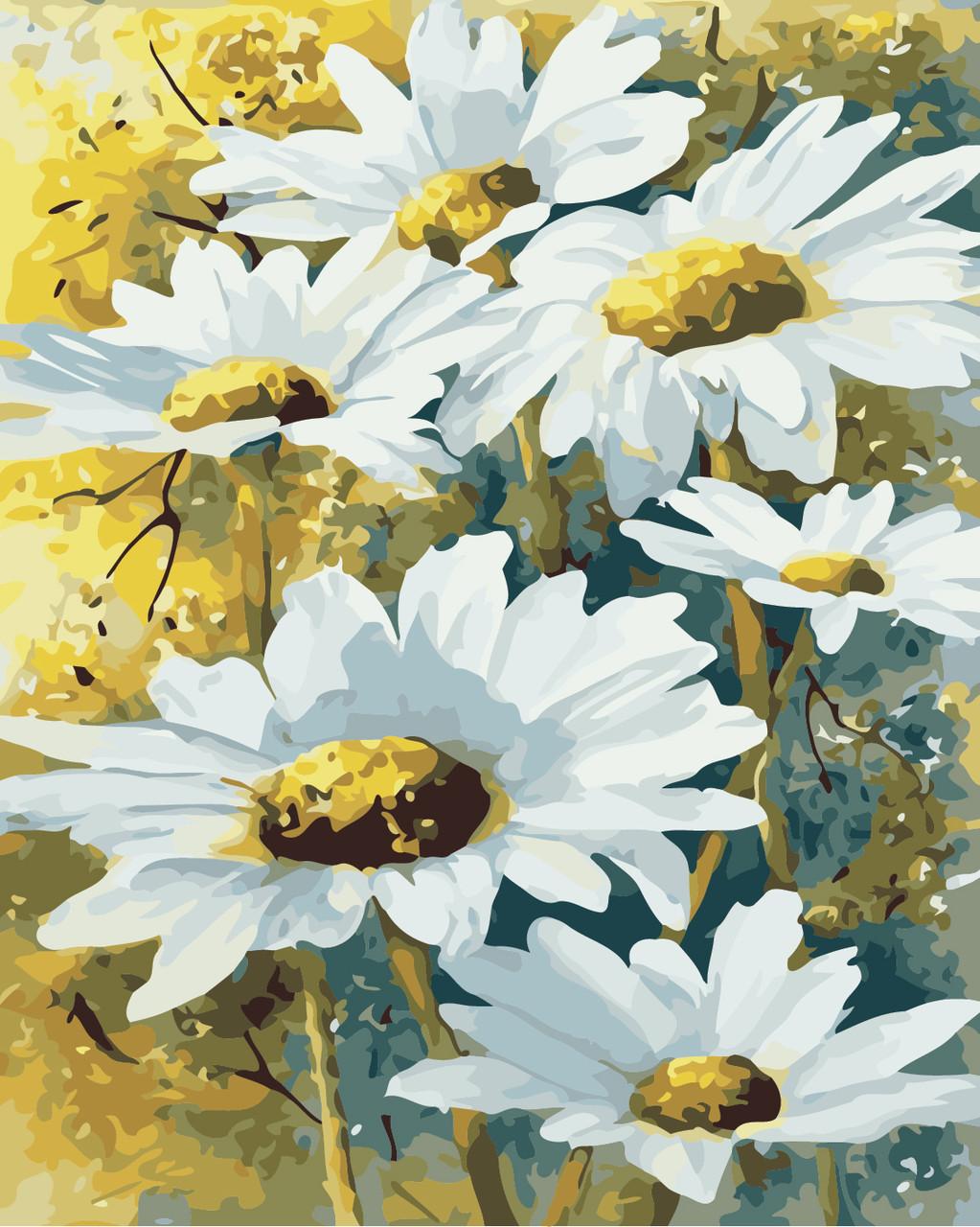 Художественный творческий набор, картина по номерам Полевые ромашки, 40x50 см, «Art Story» (AS0840)