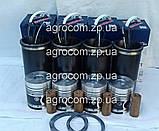 Поршнева група МТЗ-80, МТЗ-82, Д-240, Д-243., фото 6