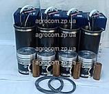 Поршнева група МТЗ-80, МТЗ-82, Д-240, Д-243., фото 7