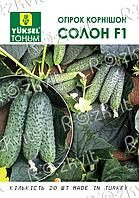 Семена Огурца Солон огурца корнишона партенокарп -(Yuksel)-50шт