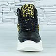 Кроссовки женские черные деми эко кожа принт леопард b-473, фото 3