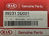 Датчик температури зовнішньої кіа Спортейдж 4 1.6 crdi, KIA Sportage 2019- Qle, 392312u001, фото 4