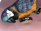 Декоративная фигура с часами Попугай 40.5см, фото 5