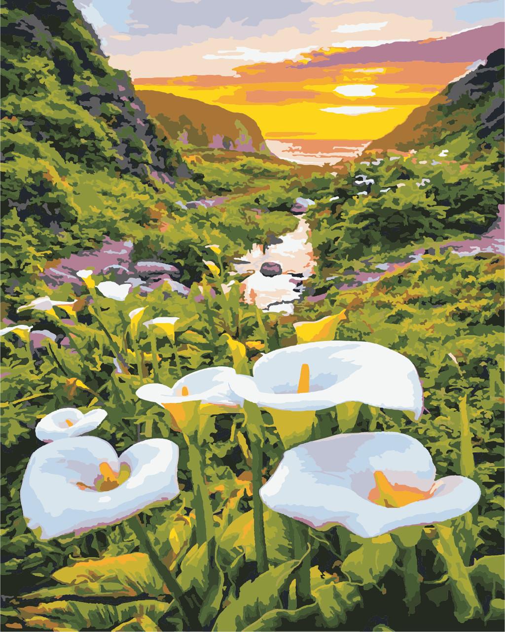 Художественный творческий набор, картина по номерам Цветы в горах, 40x50 см, «Art Story» (AS0867)