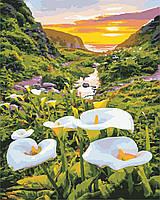 Художественный творческий набор, картина по номерам Цветы в горах, 40x50 см, «Art Story» (AS0867), фото 1