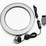 Светодиодная кольцевая Led лампа RING 26см на штативе 2м с держателем, для блогеров, селфи, фотографов, фото 7