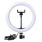 Свет кольцевой Selfie Ring Fill Light D=26 см Кольцевая лампа 5500K - 3200К 3 Режима освещения, фото 8