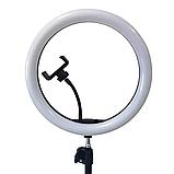 Світло кільцевої Selfie Ring Fill Light D=26 см Кільцева лампа 5500K - 3200К 3 Режими освітлення, фото 8