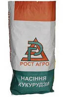 Семена гибрида кукурузы ДН Галатея ФАО 250-260 Рост Агро