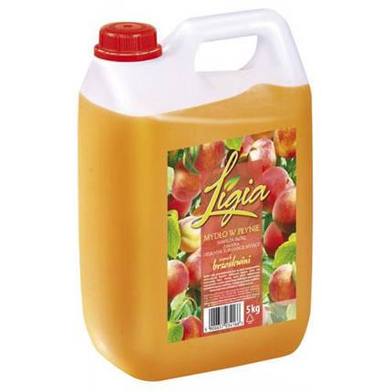 Рідке мило для рук Ligia з персиковим ароматом 5 л, фото 2