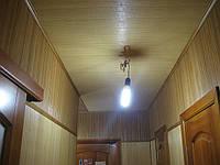 Бамбук в коридоре(Поклейка Тернопіль)
