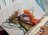 Набори для вишивання хрестом муліне DMC Морж, фото 10