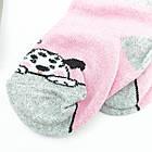 Носки детские демисезонные EKO 10р разные рисунки случайное ассорти 20037277, фото 7