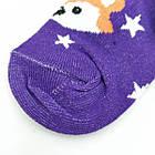 Носки детские демисезонные средние Добра Пара 18-20р Еноты ассорти 20035846, фото 2