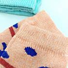 Носки детские демисезонные средние мальчик EKO 12р случайное ассорти 20032302, фото 3