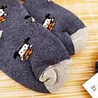 Носки детские махровые средние EKO 12р случайное ассорти 20032319, фото 3