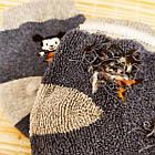 Носки детские махровые средние EKO 12р случайное ассорти 20032319, фото 4
