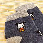 Носки детские махровые средние EKO 12р случайное ассорти 20032319, фото 5
