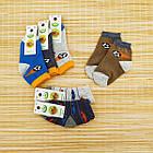 Носки детские махровые средние EKO 12р случайное ассорти 20032319, фото 9