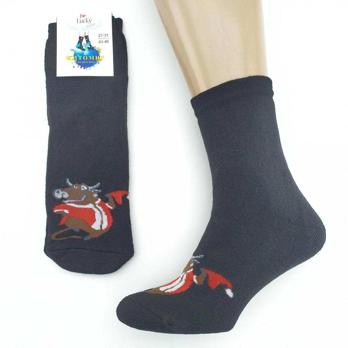Носки мужские махровые высокие,BEAUTY SOCKS, р27-31, быки черные 20037437