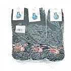 Носки мужские махровые высокие,BEAUTY SOCKS, р27-31, быки черные 20037437, фото 5