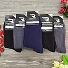 Носки мужские махровые однотонные высокие РефлексТекс 27-29р тёмное ассорти 20036799, фото 6