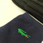 Носки мужские махровые средние спорт L 41-45р тёмное ассорти 20034795, фото 3