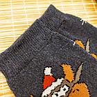 Женские носки с махрой ЖИТОМИР СТИЛЬ 23-25 ассорти бык 20039028, фото 4