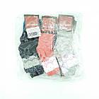 Носки подростковые демисезонные высокие ЖИТОМИР р30-35 Украина, ассорти, 20024116, фото 5