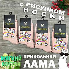 Носки с приколами демисезонные Crazy Lama 222-65 Турция one size (37-44р) 20036379