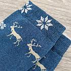 Носки женские махровые высокие Capitano 23-25р олень бирюзовый, фото 6