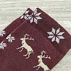Носки женские махровые высокие Capitano 23-25р олень бордовый, фото 6