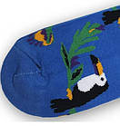 Носки с приколами демисезонные Neseli Coraplar Toucan Blue 7172 Турция one size (37-44р) 20034740, фото 2