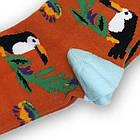 Носки с приколами демисезонные Neseli Coraplar Toucan Orange 7171 Турция one size (37-44р) 20034757, фото 2