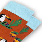 Носки с приколами демисезонные Neseli Coraplar Toucan Orange 7171 Турция one size (37-44р) 20034757, фото 3
