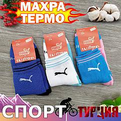 Носки женские махровые средние SPORT P 36-40р ассорти 20040345