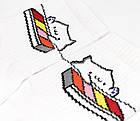 Носки с приколами демисезонные Rock'n'socks 455-38 Украина one size (37-44р) 20033927, фото 2