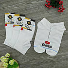 Носки с приколами демисезонные короткие Rock'n'socks 445-26 Украина one size (37-44р) 20033712, фото 3