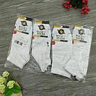 Носки с приколами демисезонные короткие Rock'n'socks 445-26 Украина one size (37-44р) 20033712, фото 6
