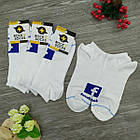 Носки с приколами демисезонные короткие Rock'n'socks 445-27 Украина one size (37-44р) 20033699, фото 4