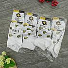 Носки с приколами демисезонные короткие Rock'n'socks 445-28 Украина one size (37-44р) 20033774, фото 6