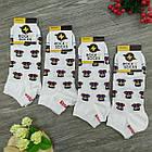Носки с приколами демисезонные короткие Rock'n'socks 445-34 Украина one size (37-44р) 20033811, фото 2