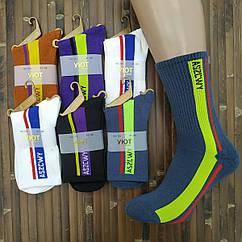 Носки мужские высокие деми UYUT men cotton socks хлопок 39-42р. ASZCWY ассорти 20007621