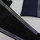 Лосины женские демисезонные Золото со стразами, р. XL, черные, 20030070, фото 3