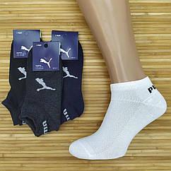 Носки мужские с сеткой короткие SPORT P UZ р36-41, ассорти, 20014070