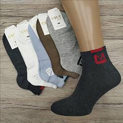 Носки мужские средние деми UYUT men cotton socks хлопок 41-47р.бесшовные с двойной пяткой ассорти НМД-0510365