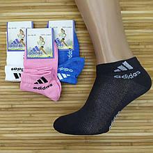 Жіночі шкарпетки літні сітка короткі SPORT A Туреччина p36-39 кольорове асорті, 20014643