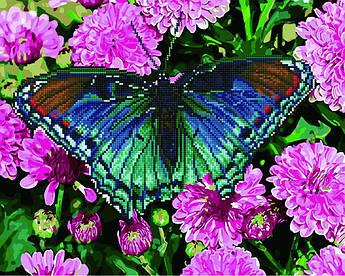 Алмазна мозаиїка плюс картина за номерами Тропічний метелик (Без коробки) Rainbow Art (GZS1032) 40 х 50 см