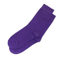 Носки демисезонные однотонные Neseli Coraplar Daily 7356 Purple Blue Straingt Турция one size (37-43р)