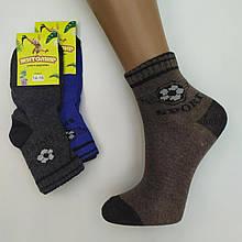 Шкарпетки дитячі демісезонні для хлопчика Житомир ТОНІК 14-16р. асорті,20013066